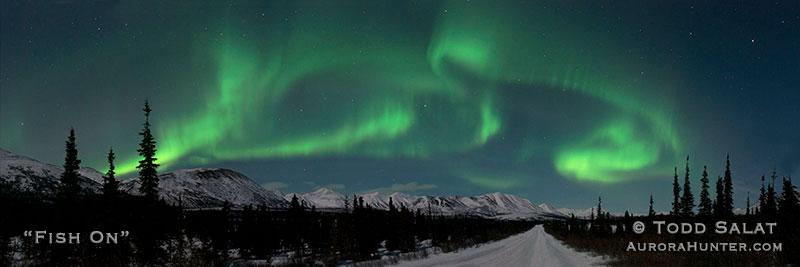 Aurora Borealis and Northern Lights FAQs | Aurora Hunter
