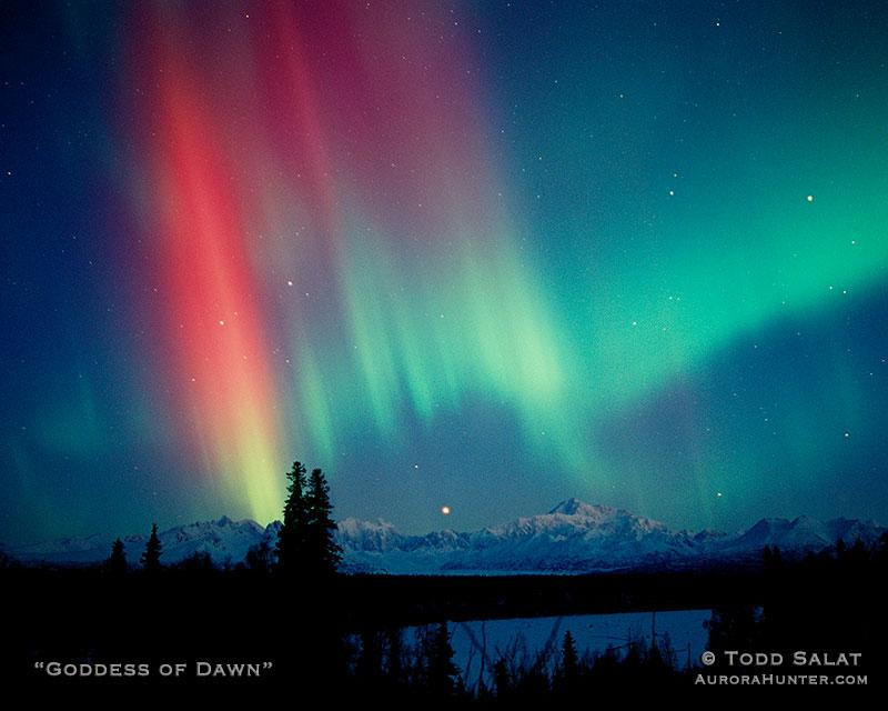 Goddess Of Dawn Aurora Hunter